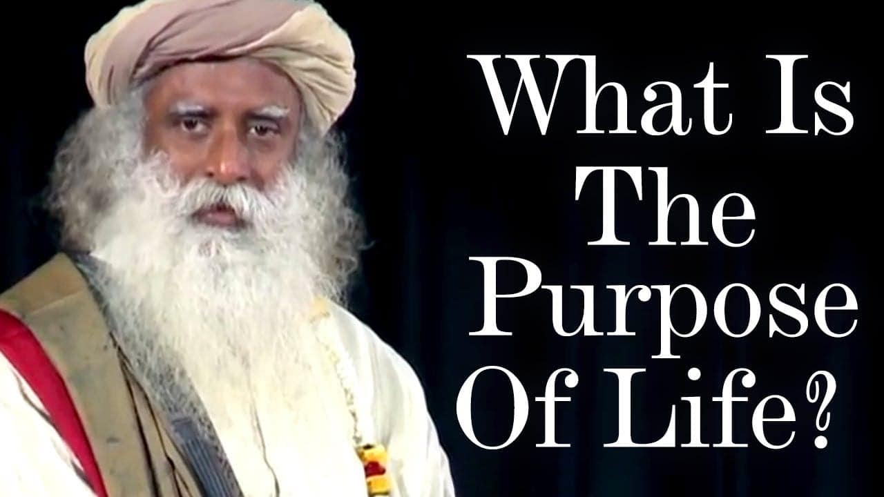 sadhgurus-insight-on-what-is-the-purpose-of-life-spiritual-life