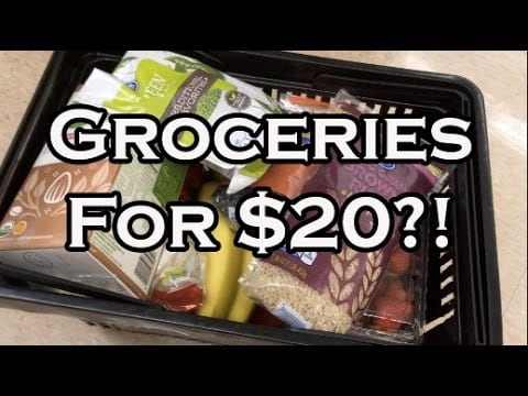 healthy-on-a-budget-20-grocery-trip