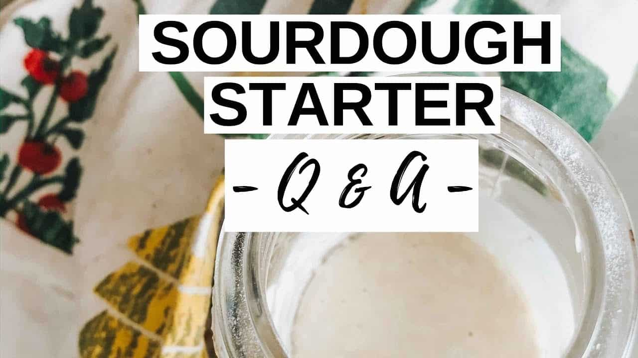 sourdough-starter-q-a-everything-you-need-to-know-about-starting-a-sourdough-starter