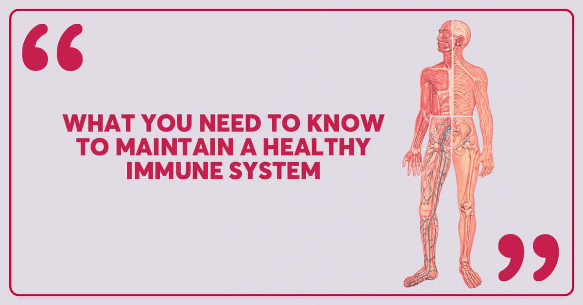 Immune-101-blog-header