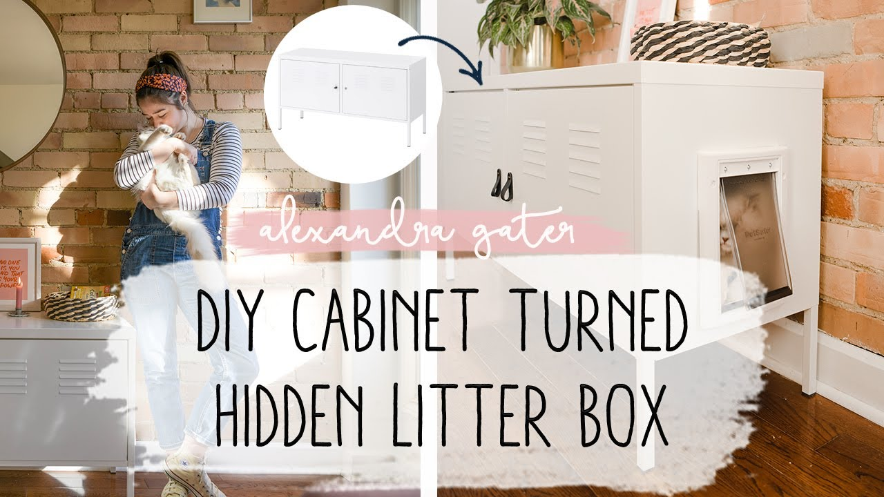 diy-cabinet-to-hide-cat-litter-box-in-a-small-space-pet-tips